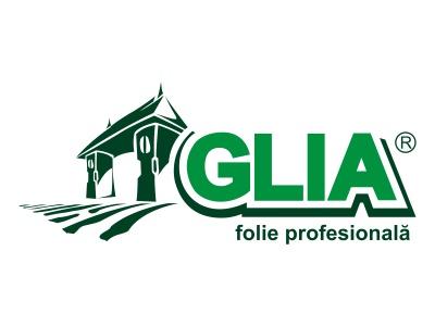 prointermed-glia clasic